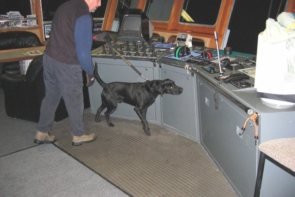 Inspection of a vessel wheelhouse.