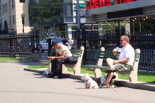 Yes, we were responsible for the bosses dogs!  Taking a break with Charlie and George Wilson on a bench in Boston.